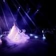 Танцевальный перфоманс «Арктика» от шоу «Бионика»