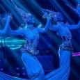 Aqua Performance